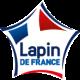 Lapin de France